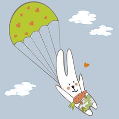 rabbit parachutist in the sky