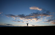 silhouette of man standing on field in front of blue sky