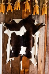 Cattle black and white skin texture on wooden background