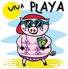 cochon,porc,humour,plage,été,maillot de bain,star,jet set