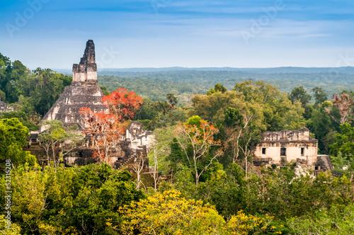 Fotobehang Centraal-Amerika Landen Tikal Temple