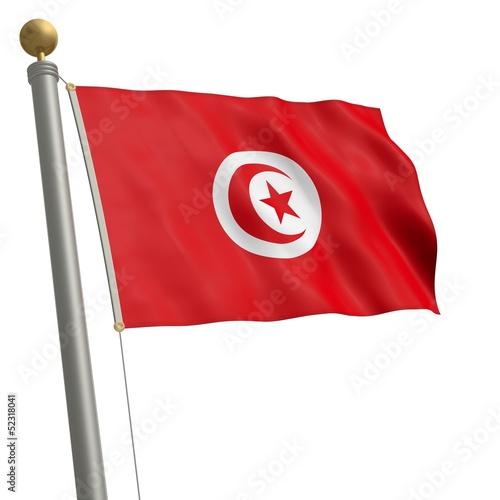 Die Flagge von Tunesien flattert am Fahnenmast