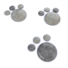 3d Stone footprints