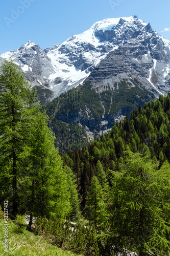 Fototapeta Summer Stelvio Pass (Italy)