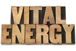 vital energy in wood type