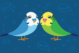 Two cute budgerigar in love