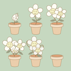 Illustration of flower growth demonstration life cycle