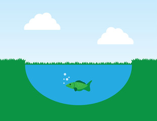 Fish in a pond with surrounding grass