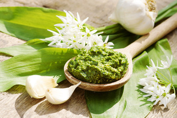 Bärlauch-Pesto mit Bärlauchblättern und -blüten