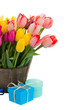 tulip flowers in wooden pot with gift boxes