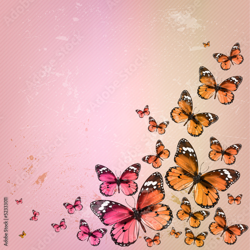 Colorful vintage summer background with butterfly. Grunge paper