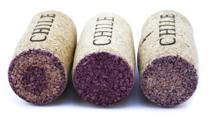 Isolated Chile Wine Corks