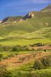 Sizilianische Obstplantage im Hügelland