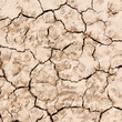 texture of dry cracked earth background .