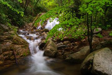 Cascada y río en Primavera