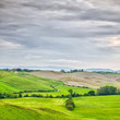 Tuscany, rural landscape. Farmland, white road and trees. Italy.