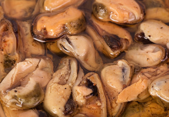 Tasty mussels. Seafood background