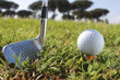 Golf putter and ball