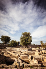 Egnatia Necropolis