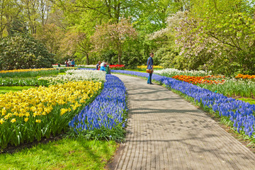 Tourists in tulip garden in spring. Keukenhof. Lisse. The Nether