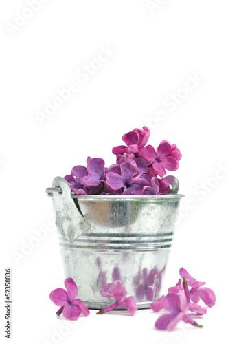 Staande foto Lilac pétales de lilas