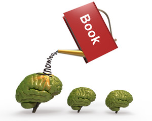 Drizzle with brain book