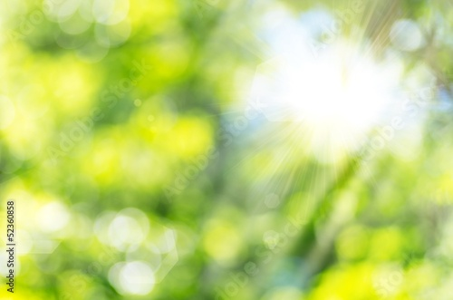 Nature Glow_Bokeh and sun... - 52360858