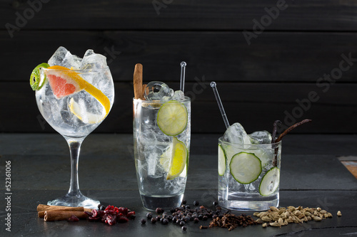 Gin tonic cocktails with lima cucumber and grapefruit - 52361006