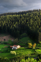 typical basque country house in countryside