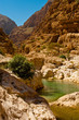the wadi shab with emerald green water