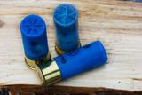 Hunting cartridges for shotgun poster