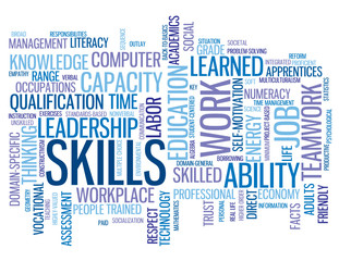 SKILLS Tag Cloud (performance talent personal development goals)
