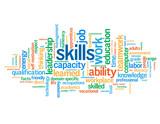 """""""SKILLS"""" Tag Cloud (talent performance  personal development cv)"""