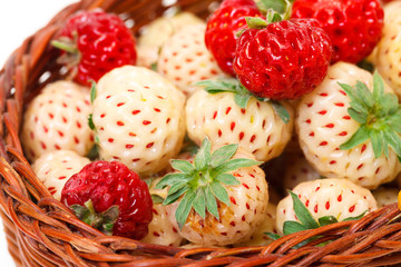Ripe White and Red Strawberries in basket