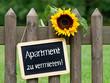 Apartment zu vermieten !
