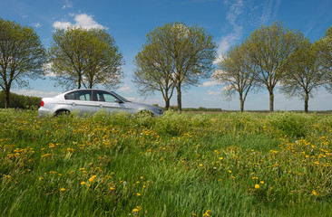 Car along a countryside road in spring