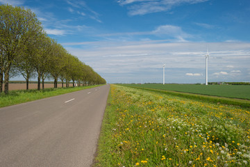 Road through the countryside in spring