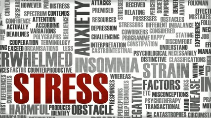 Stress Management of a Stressed Person as Concept