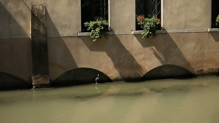 Balcony on the river. Treviso, Italy.