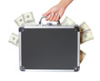 dollars bills in case in female hand isolated, money in suitcase