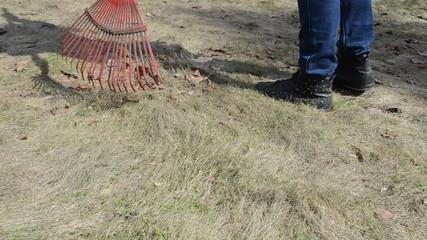 gardener woman rake leaves dry grass garden lawn meadow spring