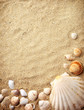 Leinwandbild Motiv shells on sand