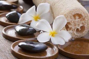 White frangipani with zen stone