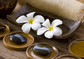 White frangipani with zen stone