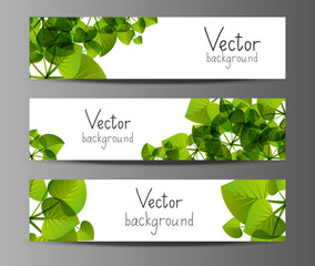 Green horizontal banners with place for text