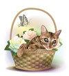 Illustration of  the tabby cat sitting in a basket with roses.