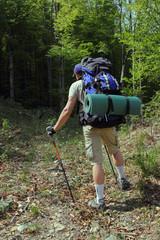 турист подымаеться в гору с рюкзаком и палками для трекинга