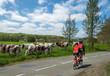 Cyclotourisme, tandémistes dans la campagne