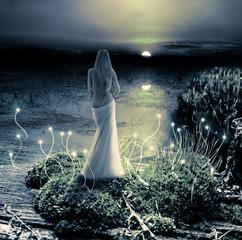 Fantasy magic world. Pixie and moon