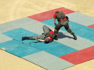 Defensa personal Guardia Real 1